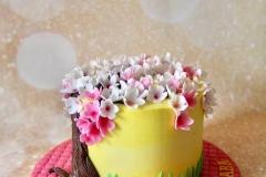 cake_dad_5