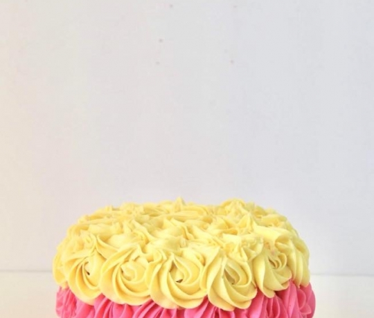 smash_cake_19