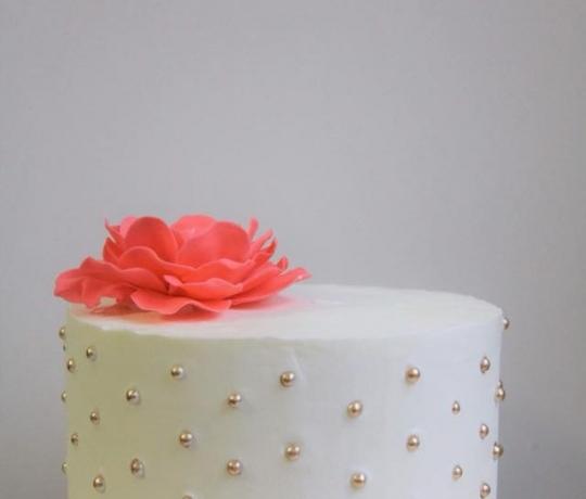 smash_cake_5